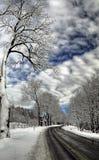 Paisagem do inverno, tempo do meio-dia Foto de Stock