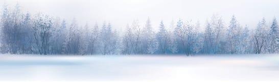Paisagem do inverno do vetor ilustração royalty free