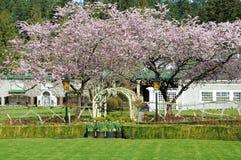 Paisagem do jardim Foto de Stock Royalty Free