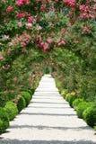Paisagem do jardim de rosas Imagem de Stock