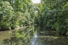 Paisagem do labirinto da floresta de Tricrate, Ucrânia Fotos de Stock Royalty Free