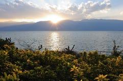 Paisagem do lago Imagens de Stock Royalty Free