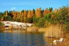 Paisagem do lago autumn com cores brilhantes Fotos de Stock Royalty Free