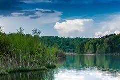 Paisagem do lago com a floresta grossa do vidoeiro e o céu azul agradável Fotografia de Stock Royalty Free