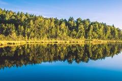 Paisagem do lago e da floresta Fotos de Stock