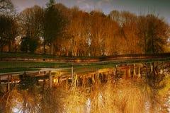 Paisagem do lago e das árvores Imagem de Stock Royalty Free