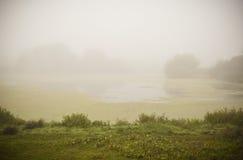 Paisagem do lago Fogy Fotos de Stock Royalty Free