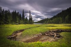 Paisagem do lago Foldsjoen perto de Hommelvik Lago boreal, florestas imagens de stock royalty free