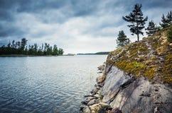 Paisagem do lago ladoga com as árvores na rocha imagem de stock royalty free