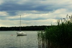 Paisagem do lago Miedwie, Stargard, Polônia imagem de stock