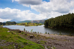 Paisagem do lago mountain Fotografia de Stock Royalty Free