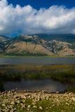 Paisagem do lago mountain Fotografia de Stock