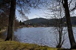 Paisagem do lago Titisee e da cidade de Titisee-Neustadt fotos de stock royalty free