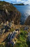 Paisagem do litoral de Cantábria Imagens de Stock