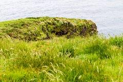 Paisagem do litoral irlandês do sul Imagem de Stock