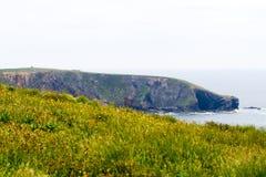 Paisagem do litoral irlandês do sul Fotos de Stock