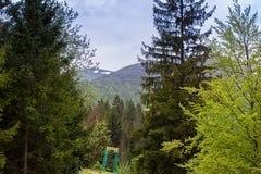 Paisagem do montanhas com abeto e céu Fotos de Stock Royalty Free