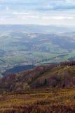 Paisagem do montanhas com abeto e o vale gramíneo Fotos de Stock