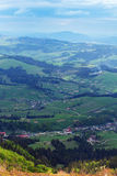 Paisagem do montanhas de Carpathians com abeto e va gramíneo Foto de Stock Royalty Free