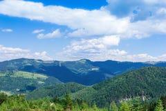 Paisagem do montanhas de Carpathians com abeto, vall gramíneo Fotos de Stock Royalty Free
