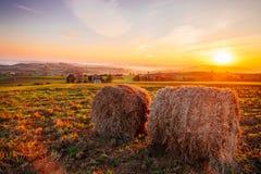 Paisagem do nascer do sol da mola Imagens de Stock Royalty Free