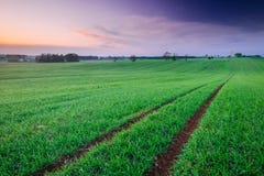 Paisagem do nascer do sol da mola Foto de Stock Royalty Free