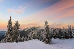 Paisagem do nascer do sol do inverno Fotos de Stock Royalty Free