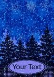 Paisagem do Natal, abeto Imagem de Stock
