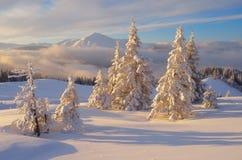Paisagem do Natal nas montanhas fotos de stock