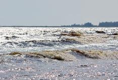 Paisagem do norte com floresta e Lago Ladoga fotografia de stock royalty free