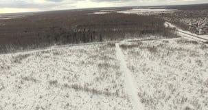 Paisagem do norte do inverno video estoque