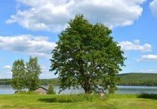 Paisagem do norte no verão Lago finland fotografia de stock