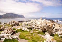 Paisagem do oceano Fotos de Stock Royalty Free
