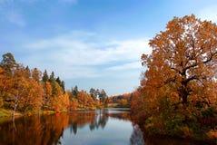 Paisagem do outono Foto de Stock Royalty Free