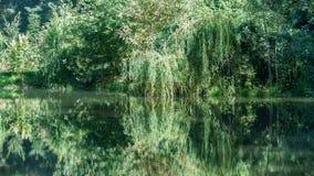 Paisagem do outono com lago Imagem de Stock Royalty Free