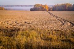Paisagem do outono com névoa da manhã em Rússia central fotografia de stock