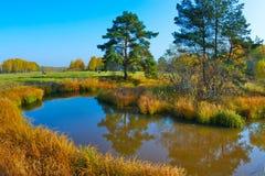 Paisagem do outono com uma lagoa Fotos de Stock