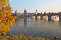 Paisagem do outono com vistas da ponte de Charles em Praga Fotografia de Stock