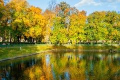 Paisagem do outono da lagoa de Karpiev no jardim do verão Parque do outono de St Petersburg Imagens de Stock Royalty Free