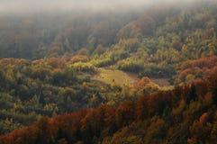 A paisagem do outono da montanha com floresta colorida imagem de stock
