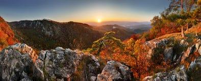 Paisagem do outono da montanha com floresta e castl coloridos de Uhrovec fotografia de stock royalty free