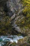 Paisagem do outono da natureza Cachoeira em Soteska Vintgar Eslovênia Fotografia de Stock