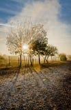 Paisagem do outono de Romênia Foto de Stock Royalty Free