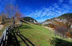 Paisagem do outono em montanhas Carpathian fotos de stock royalty free