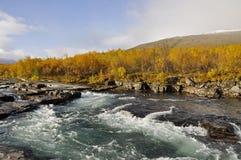 Paisagem do outono em Sweden Imagem de Stock Royalty Free