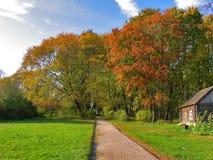 Paisagem do outono em um dia ensolarado Fotografia de Stock