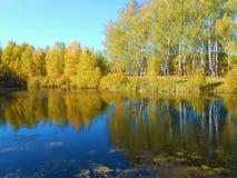 Paisagem do outono na lagoa fotos de stock