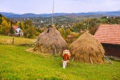Paisagem do outono na Transilvânia Fotografia de Stock