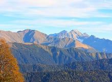 Paisagem do outono nas montanhas Imagens de Stock