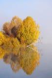 Paisagem do outono no lago foto de stock royalty free